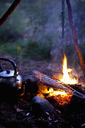 Fish being grilled on bonfire at campsite - MASF03180