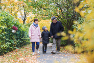 Full length of boy walking with great grandfather and mother in park during autumn - MASF03189