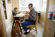 Man looking at dog while feeding baby boy sitting on high chair - CAVF36737