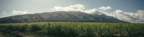 Panoramic view of field against mountains - CAVF36953