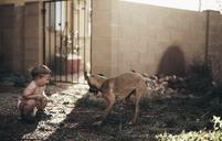 Boy playing with dog in backyard - CAVF37715