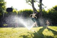 Boys playing in sprinkler - CAVF37913