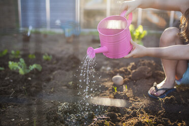 Midsection of girl watering seedling in backyard - CAVF38455