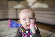 Portrait of cute baby girl playing with toy while sitting at home - CAVF38464