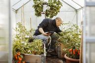 Senior gay man holding digital tablet while examining plants at nursery - MASF03985