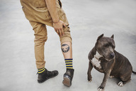 Low section of carpenter showing dog tattoo on leg while standing by pet - MASF04287