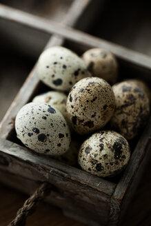 Quail eggs on wooden box - MASF04653
