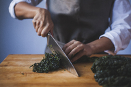 Midsection of woman cutting kale in kitchen - CAVF38963