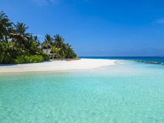 Maledives, Ross Atoll, beach bar and sandy beach with palms - AMF05695