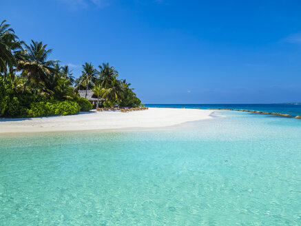 Maledives, Ross Atoll, beach bar and sandy beach with palms - AMF05695