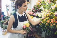 Female florist picking roses from vases at shop - CAVF39151