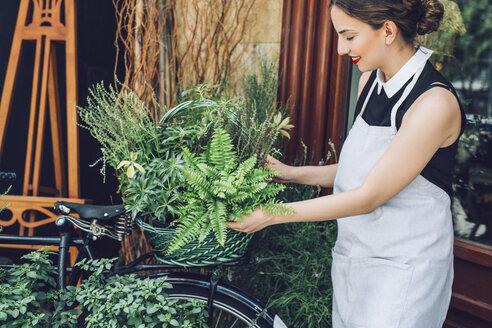 Smiling florist arranging leaves in basket outside shop - CAVF39163
