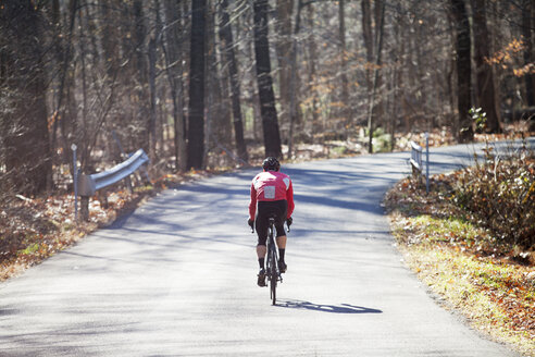 Rear view of cyclist riding bicycle on road in forest - CAVF39953