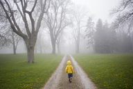 Rear view of boy in raincoat walking on dirt road at forest - CAVF40061