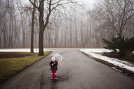 Girl with umbrella walking on road at forest during winter - CAVF40088