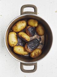 Cooking pot of burnt potatoes - MUF01527