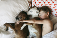 Overhead view of shirtless boy sleeping with dogs on bed - CAVF40160