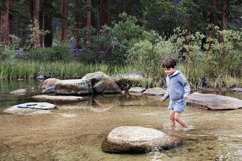 Boy wading through stream against trees - CAVF42007