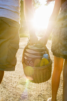 Midsection of couple carrying picnic basket against bright sun - MASF04903