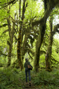 Rear view of female hiker walking amidst Hoh Rainforest - CAVF42510