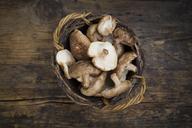 Organic Shitake mushrooms on dark wood - LVF06879
