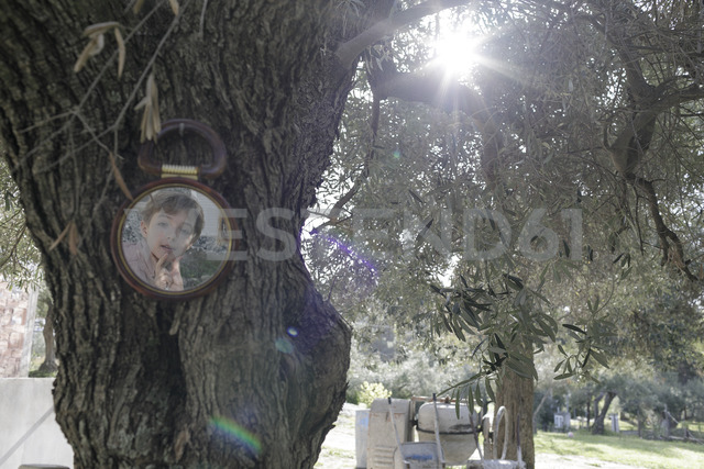 Greece, boy's mirror image at tree trunk - KMKF00175