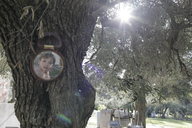 Greece, boy's mirror image at tree trunk - KMKF00175