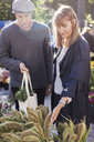 Couple choosing plants in flower market - MASF05853