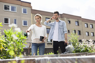 Young couple examining plants at urban garden - MASF05922