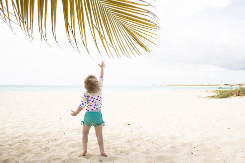 Rear view of girl reaching for palm leaf at beach - CAVF43809