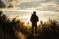 Rear view of woman standing amidst plants on field against sky at Shevlin Park during sunset - CAVF44814