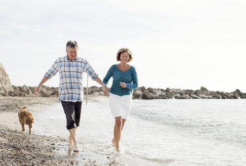 Dog chasing couple at beach - MASF06432