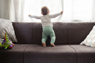 Baby girl looking through window while standing on sofa at home - CAVF45562