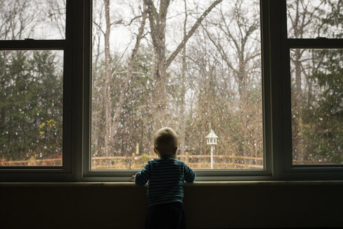 Rear view of toddler looking through window from home during winter - CAVF45956