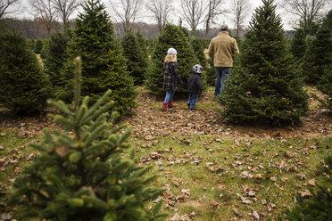 Family in warm clothing walking in farm - CAVF46007