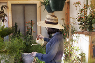 Young woman watering potted plants at greenhouse - CAVF46211