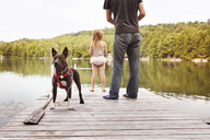 Rear view of girl and father with dog fishing in lake while standing on pier - CAVF46955