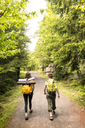 Rear view of female friends walking on road in forest - CAVF46991
