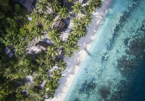 Overhead view of trees on shore by sea - CAVF47353