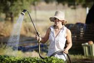 Young female farmer watering plants on field - CAVF47434