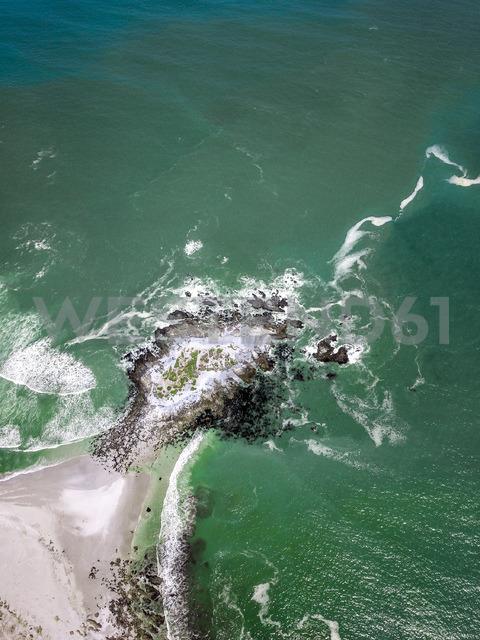 West Coast National Park, Western Cape, South Africa - DAWF00640