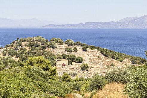 Greece, Attica, ancient city Rhamnous - MAMF00078