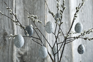 Hand-painted Easter eggs hanging from Pussy Willow twigs - ASF06175