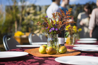 Flower vase and fruits on outdoor table with friends in background at garden party - CAVF48209