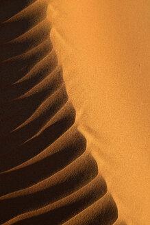 United Arab Emirates, Rub' al Khali, desert sand and ripple marks - ESF01584
