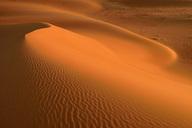 United Arab Emirates, Rub' al Khali, desert sand and ripple marks - ESF01587