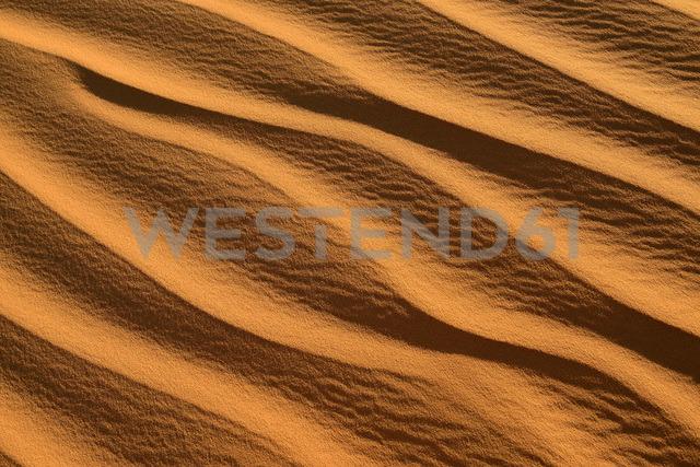 Africa, Algeria, Sahara, ripple marks, texture on a sanddune - ESF01606