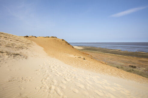 Germany, Schleswig-Holstein, North Frisian Islands, Sylt, Morsum, Morsum Cliff - WIF03513