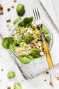 Quinoa salad with lamb's lettuce, cabbage, mini kiwi and hazelnuts - SBDF03563