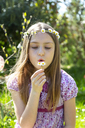 Portrait of girl with daisies in garden - SARF03695